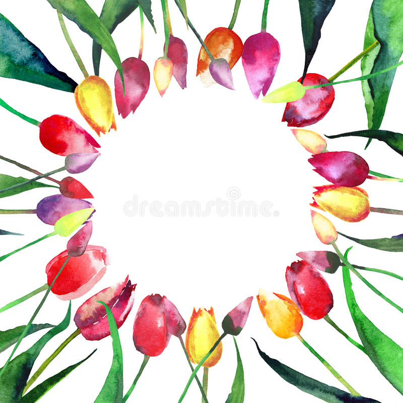 Mooie heldere tedere mooie ring van rode gele roze violette tulpenwaterverf vector illustratie