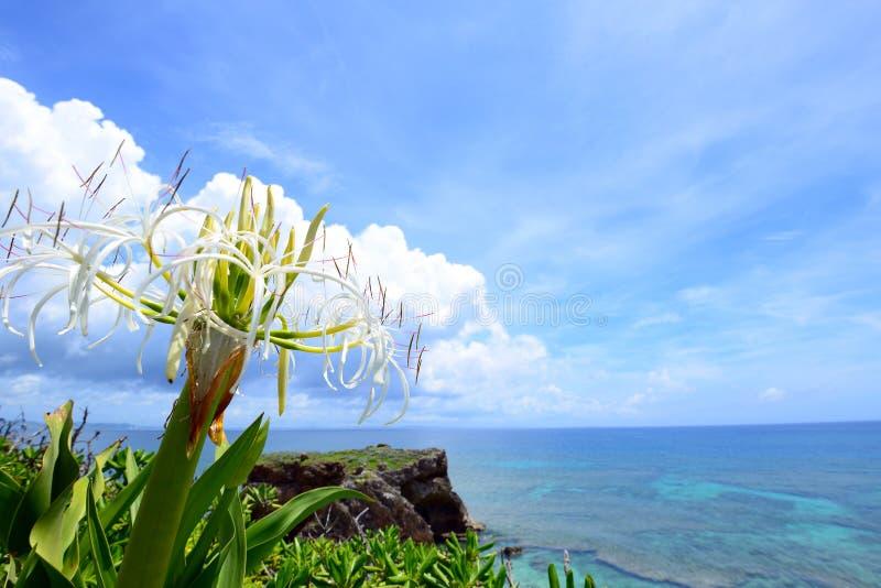 Mooie hemel en overzees in Okinawa royalty-vrije stock afbeelding