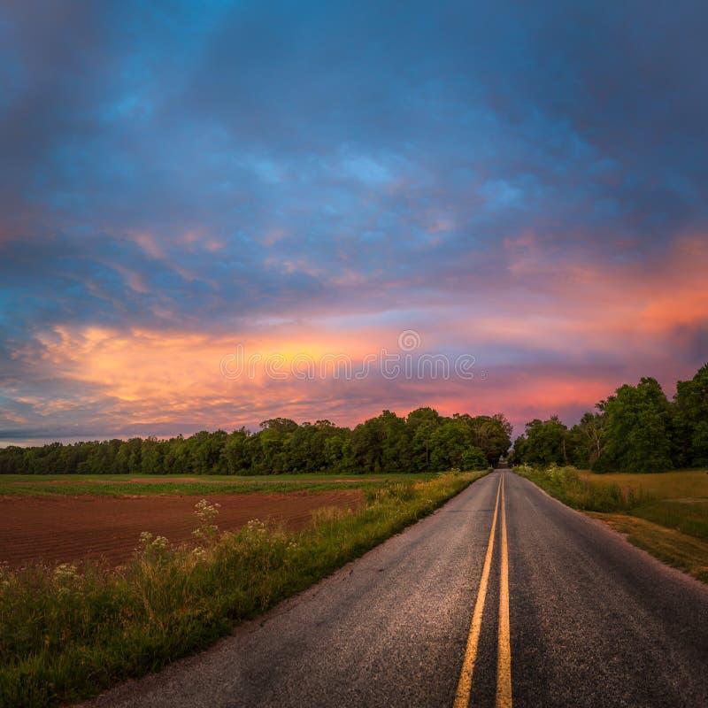 Mooie hemel met landweg stock foto
