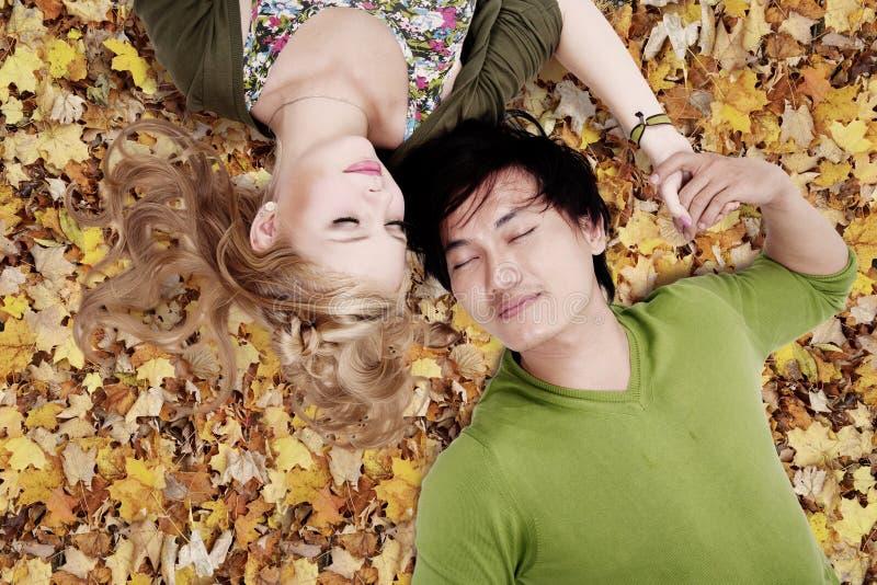 Mooie het houden van paarslaap op de herfstbladeren royalty-vrije stock fotografie