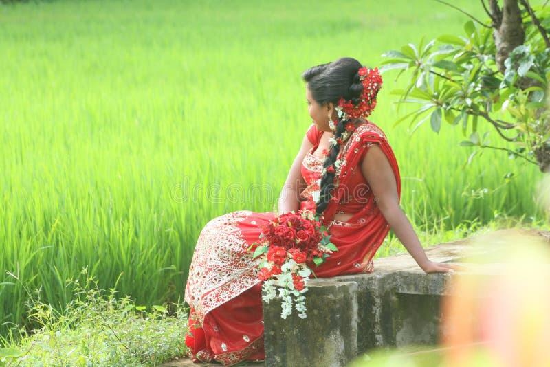 Mooie het huwelijksfoto van de sri lankan bruid o stock afbeeldingen