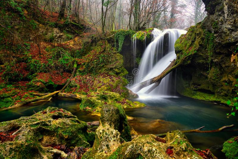 Mooie het landschapswaterval van Roemenië in het bos en natuurlijke natuurreservaat van Cheile Nerei royalty-vrije stock afbeelding