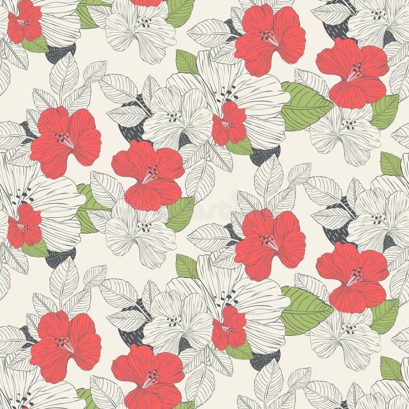 Mooie hibiscusbloemen stock illustratie