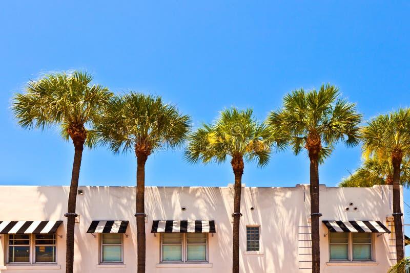 Mooie historische gebouwen met palmen stock afbeeldingen
