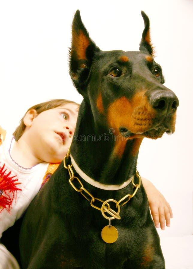 Mooie hond