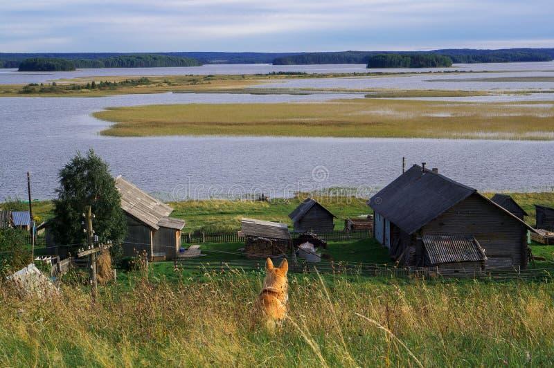 Mooie hoogste het landschapshond van Kenozero van achter mening Russisch het noordendorp Kenozerye Arkhangelskgebied, Rusland De  stock afbeeldingen
