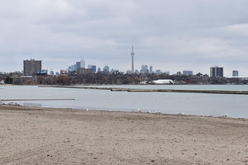 Mooie horizon te de Waterkant met de beroemde CN Toren in Toronto, Canada stock foto's