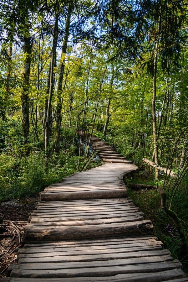 Mooie houten weg stock foto's