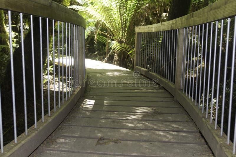 Mooie houten weg in het aardige bos royalty-vrije stock fotografie