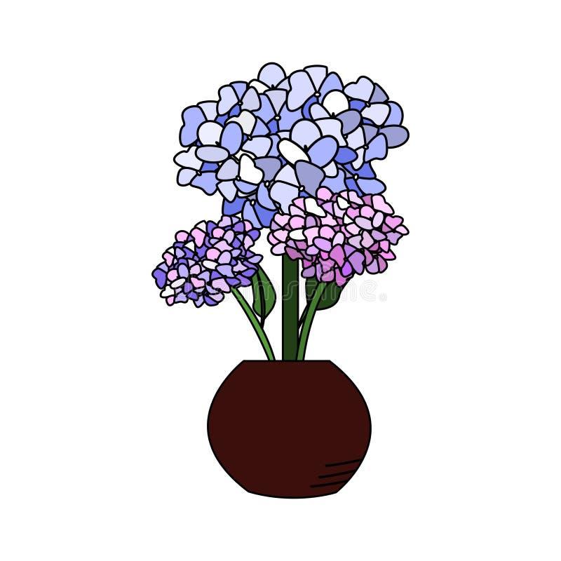 Mooie hydrangea hortensia met kleurrijke bloem in potten vectorillustratie stock illustratie
