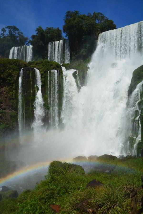 Mooie Iguazu-Dalingen van Argentinië Zuid-Amerika stock fotografie