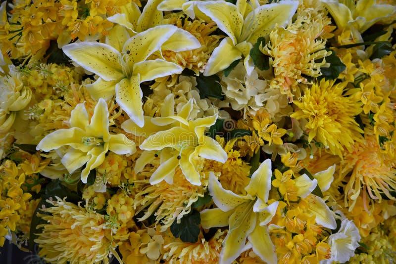 Mooie inzameling van gele bloemen stock fotografie