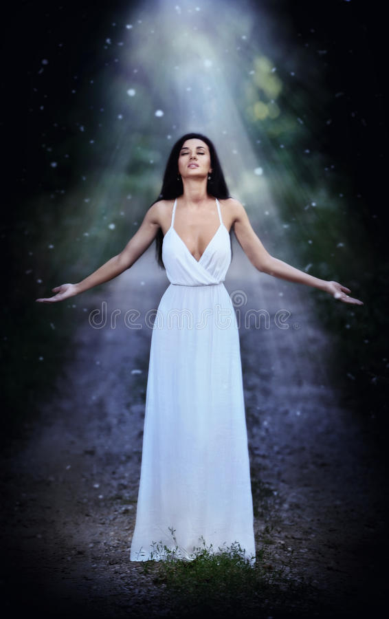 Mooie jonge dame die een elegante lange witte kleding dragen die van de stralen van hemellicht op haar gezicht in verrukt hout ge stock foto's
