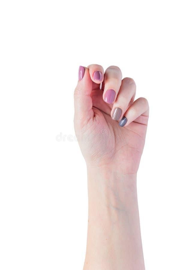 Mooie jonge die vrouwen` s handen op witte achtergrond worden ge?soleerd Modieuze in vrouwelijke manicure met grijs, roze en brui stock fotografie