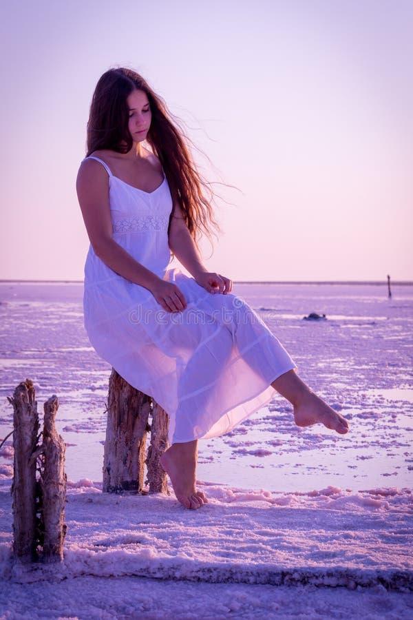 Mooie jonge meisjeszitting op de omheining op het zoute meer stock afbeeldingen
