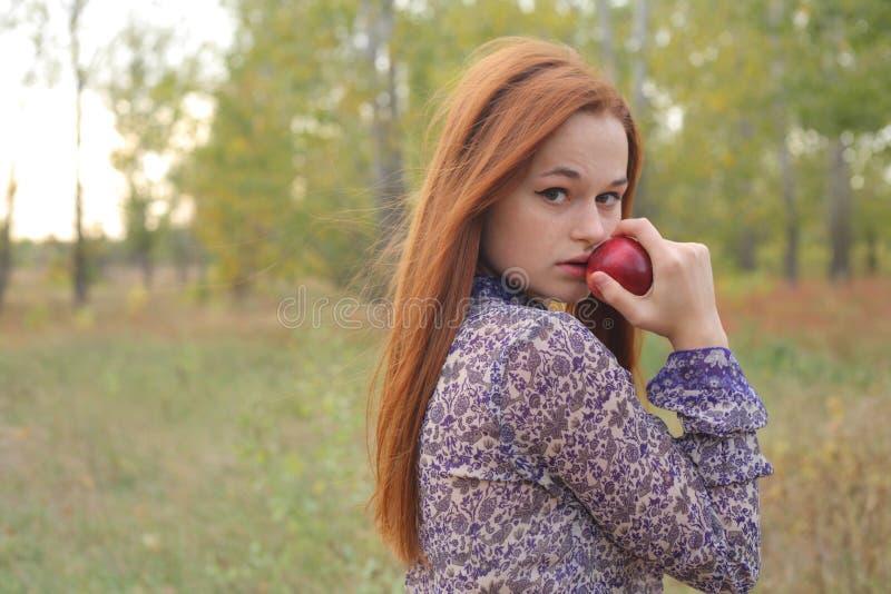 Mooie jonge roodharige in een de herfstweide stock fotografie