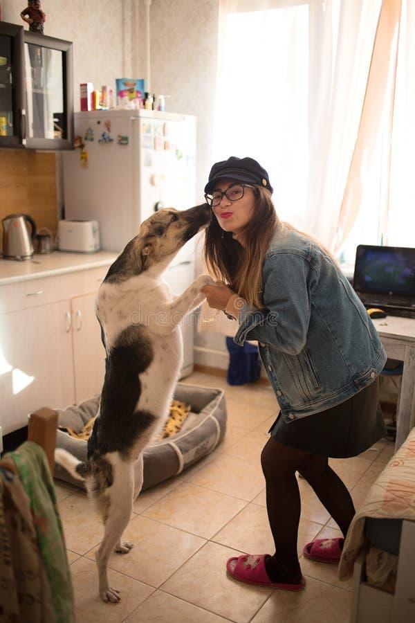 Mooie jonge vrouw die en haar hond in de keukenruimte bevinden zich koesteren stock afbeelding
