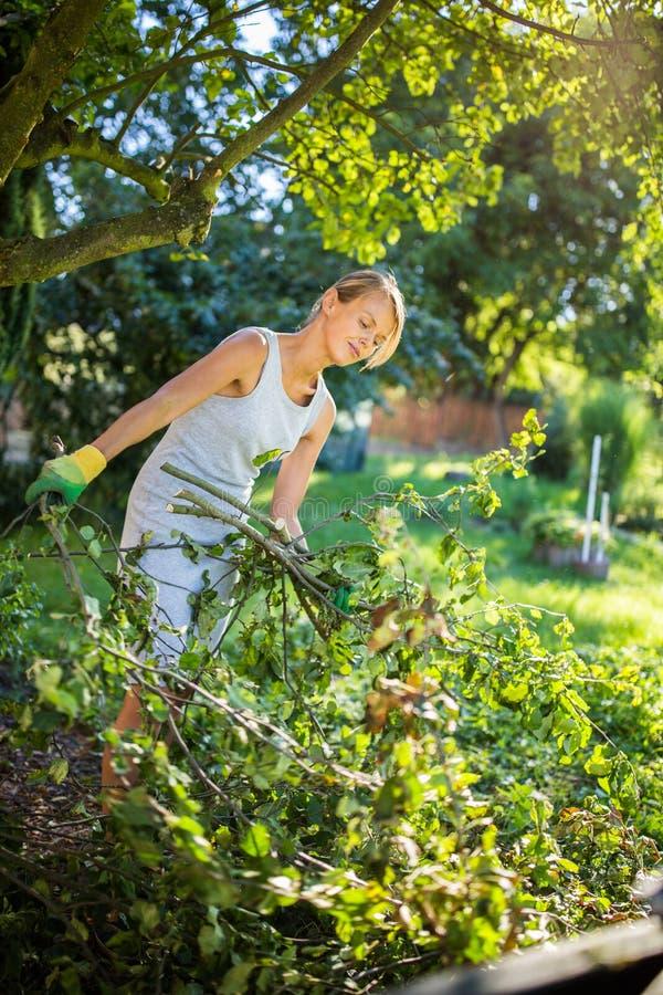 Mooie, jonge vrouw die in haar tuin, scherpe takken tuinieren stock foto's