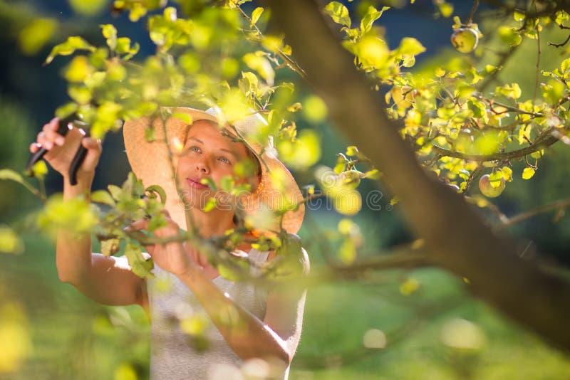 Mooie, jonge vrouw die in haar tuin tuinieren stock afbeeldingen