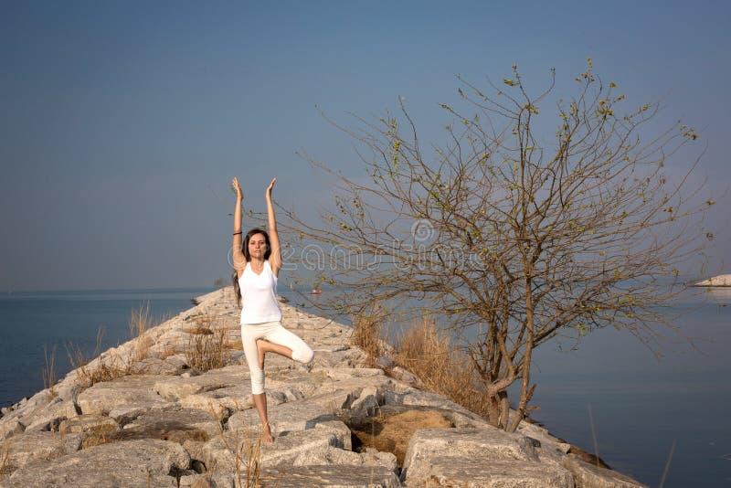 Mooie jonge vrouw het praktizeren yoga stock fotografie