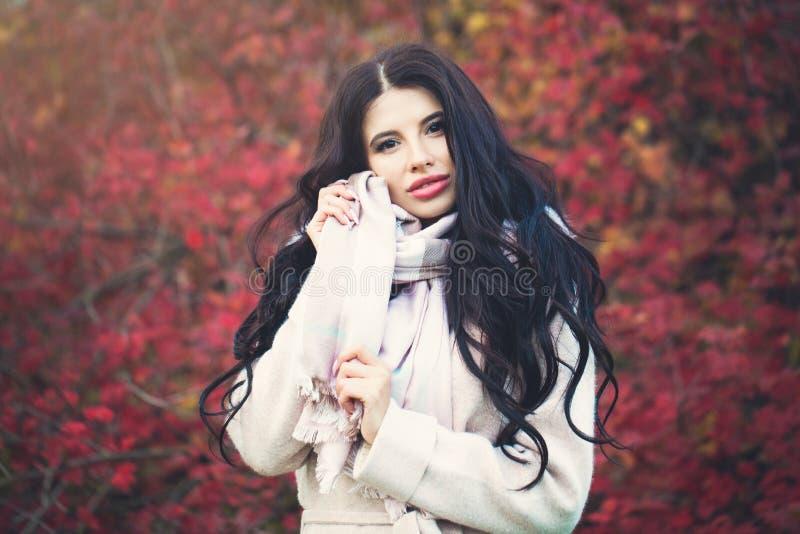 Mooie jonge vrouw met lang donkerbruin haar in dalingspark stock afbeeldingen