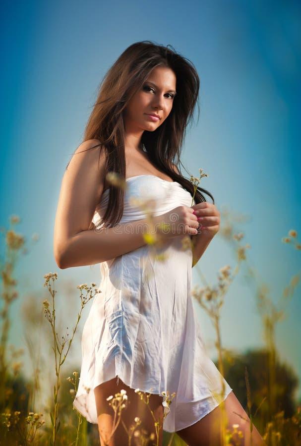 Mooie jonge vrouw op wild bloemengebied op blauwe hemelachtergrond Portret van aantrekkelijk donkerbruin meisje met het lange haa royalty-vrije stock afbeelding