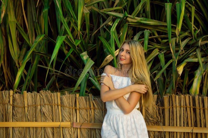 Mooie jonge vrouw in witte kleding die zich dichtbij omheining bevinden stock foto's