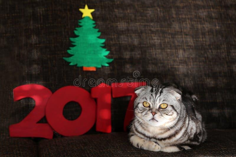 Mooie Kerstmis en Nieuwjaren scène/2017 stock foto's
