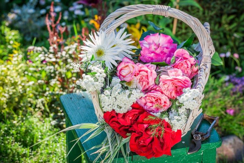 Mooie kleurrijke bloemen in zonnige tuin stock foto's