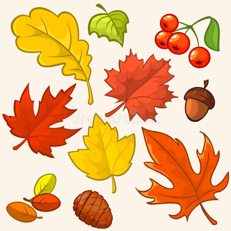 Mooie kleurrijke de herfstbladeren van de inzameling stock illustratie