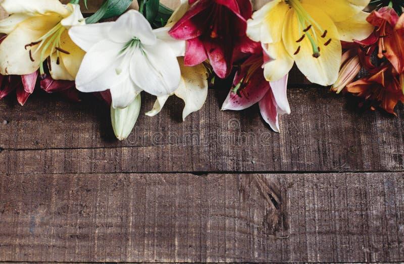 Mooie kleurrijke leliebloem op rustieke houten achtergrond Gorg stock foto's