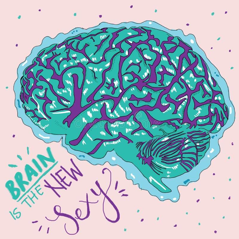 Mooie kleurrijke tekening van hersenen met het schrijven stock illustratie