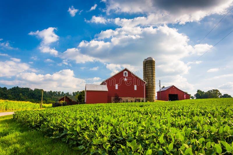 Mooie landbouwbedrijfgebied en schuur op een landbouwbedrijf dichtbij de Lentebosje, Penns stock fotografie