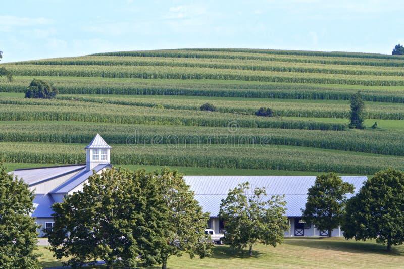 Mooie landbouwgrond stock foto