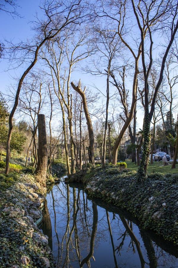 Mooie landschaps natuurlijke texturen op de het behangachtergrond van de aardtuin stock foto's
