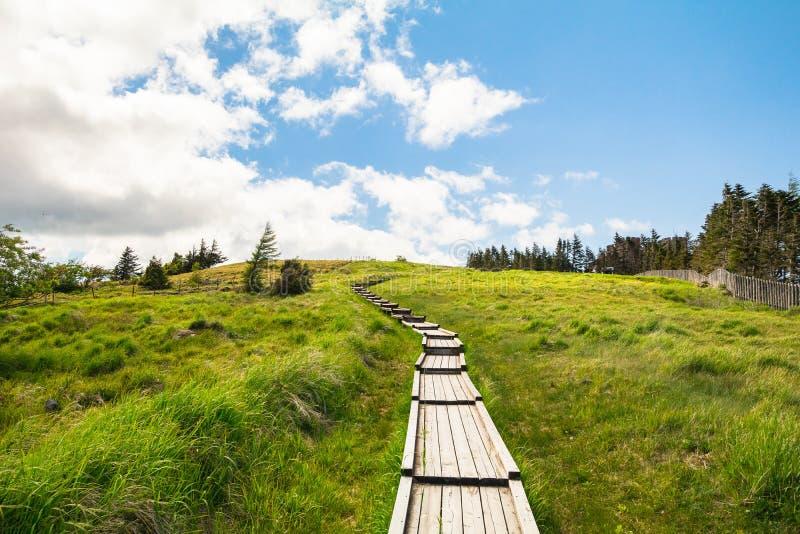 Download Mooie Landschapsmening En Houten Treden Van Utsukushigahara Stock Afbeelding - Afbeelding bestaande uit achtergrond, plateau: 107705533