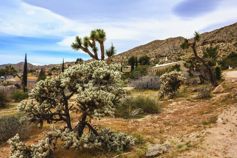 Mooie landschapsmening van de Zuidelijke stad van Californië van Yuccavallei, San Bernardino County, Californië, Verenigde Staten stock afbeeldingen