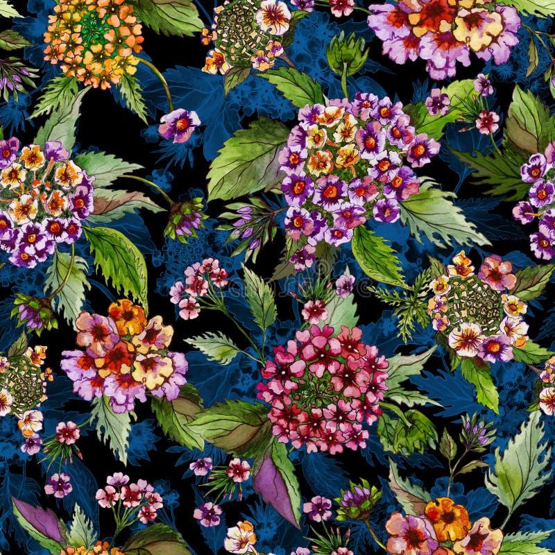 Mooie lantanabloemen met groene bladeren op zwarte en blauwe achtergrond Naadloos BloemenPatroon Het Schilderen van de waterverf stock illustratie