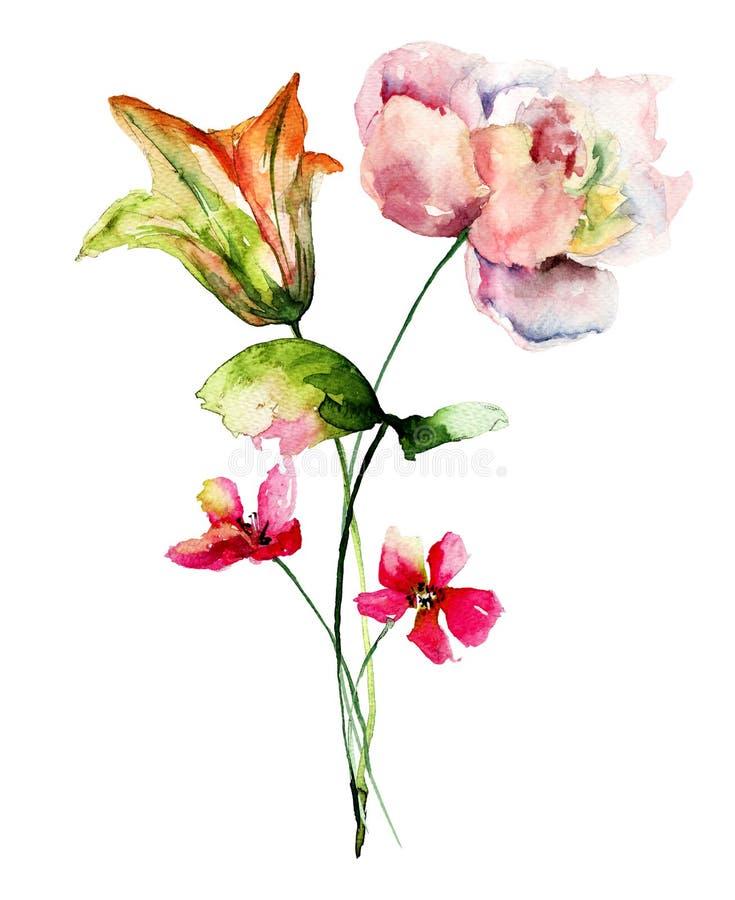 Mooie Lelie en Pioenbloemen stock illustratie