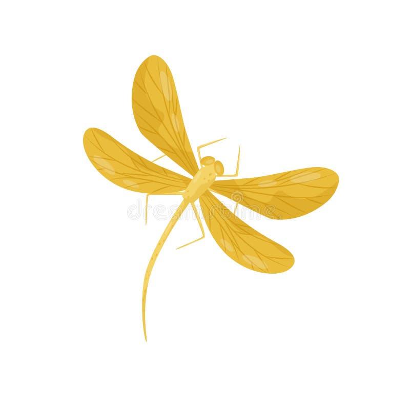 Mooie libel met heldere gele vleugels en lang lichaam Klein fast-flying insect Vlak vectorontwerp stock illustratie