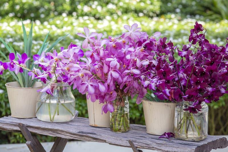 Mooie lilac roze orchideeën in een vaas in tropische tuin, in openlucht, aardconcept Exotisch kleurrijk orchideeboeket stock fotografie