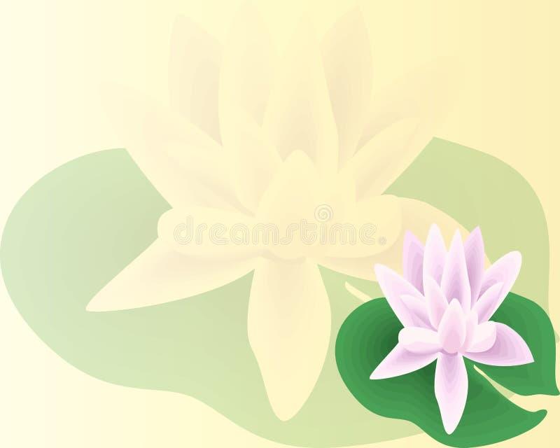 Mooie Lily Lotus Een mooie realistische die illustratie van een lelie of lotusbloem en lelie op witte dichte omhooggaand wordt ge vector illustratie