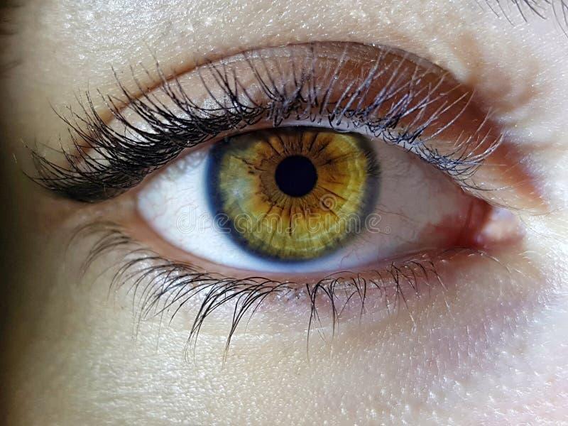 Mooie macroclose-up die van de diepe ogen van een vrouwelijke mens wordt geschoten royalty-vrije stock afbeelding
