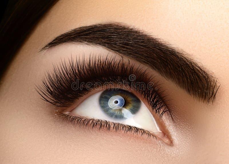 Mooie macrofemale ogen met extreem lange oejassen en gevierde makreel Perfecte vorm make-up, lange streepjes stock afbeeldingen