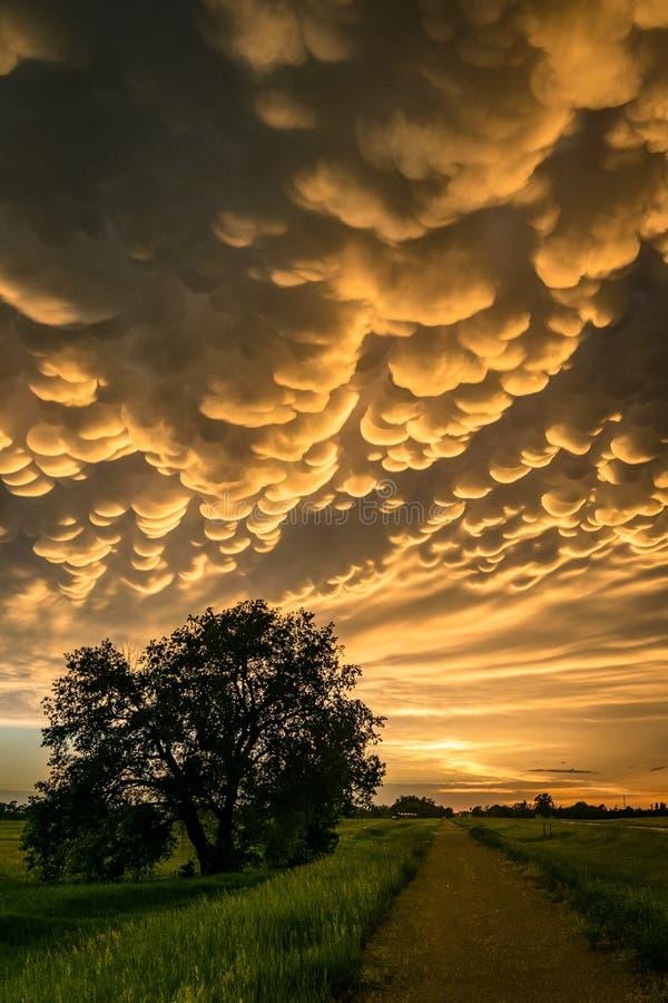 Mooie mammatus betrekt bij de rug van een strenge onweersbui over het platteland van Nebraska stock foto's