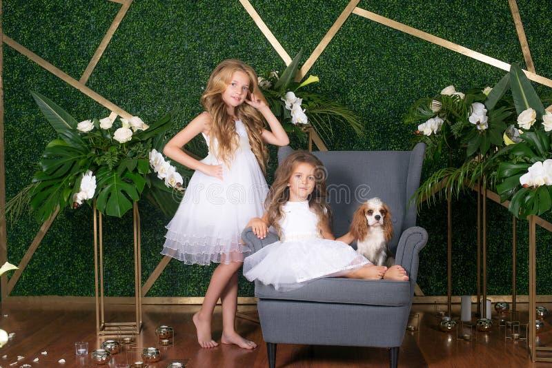 Mooie meisjes met lang blond haar in mooie witte kleding en een hond op een groene bloemenachtergrond met bloemensamenstelling royalty-vrije stock afbeeldingen