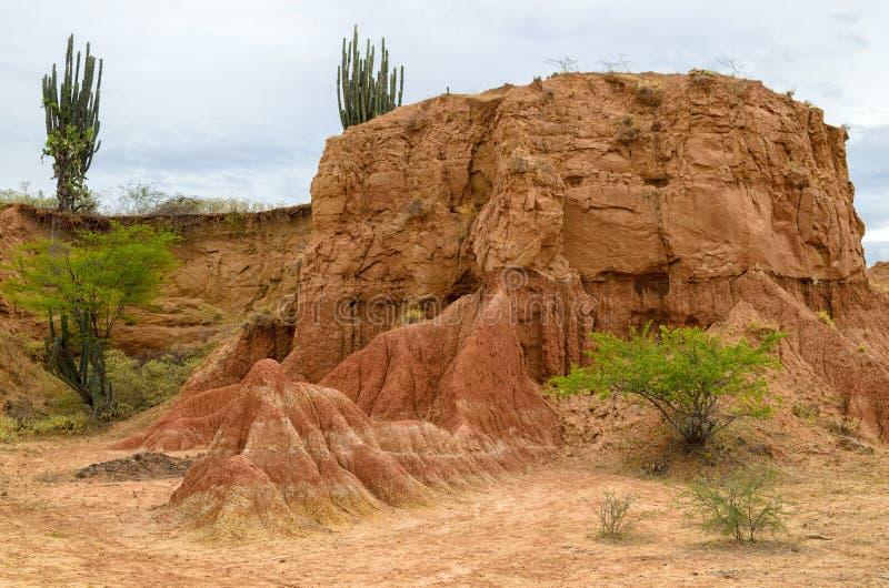 Mooie mening aan oranje rots en groene struiken en cactus royalty-vrije stock foto