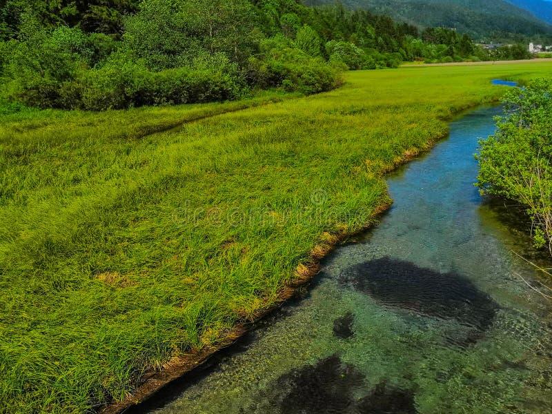 Mooie mening aan Sava Spring en montains stock afbeelding