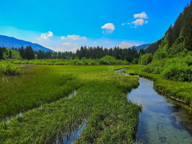 Mooie mening aan Sava Spring en montains stock foto's