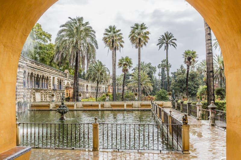 Mooie mening door een boog van een fontein en palmen stock foto's